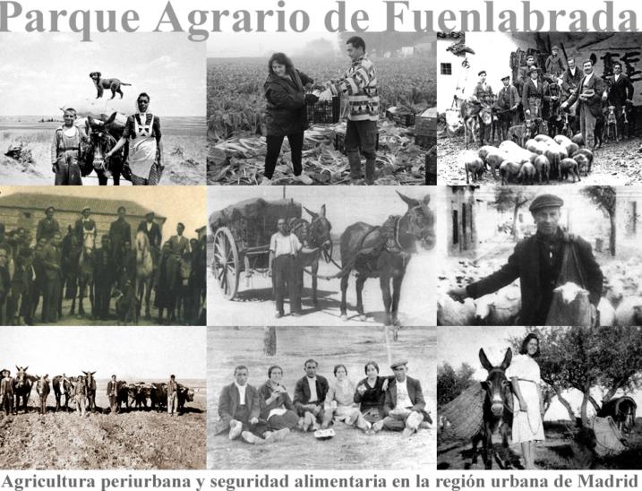 Parque agrario Fuenlabrada, agricultira madrid