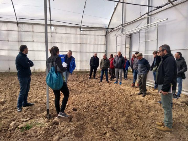 arque agrario Fuenlabrada INTIA - Heliconia